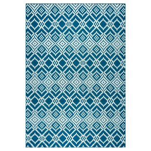 McCone Navy Indoor/Outdoor Area Rug