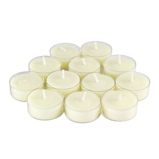 Scented Tea Light Candle in Vanilla Scented Ivory (Set of 12)