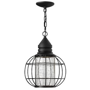 New Castle 1-Light Outdoor Hanging Lantern