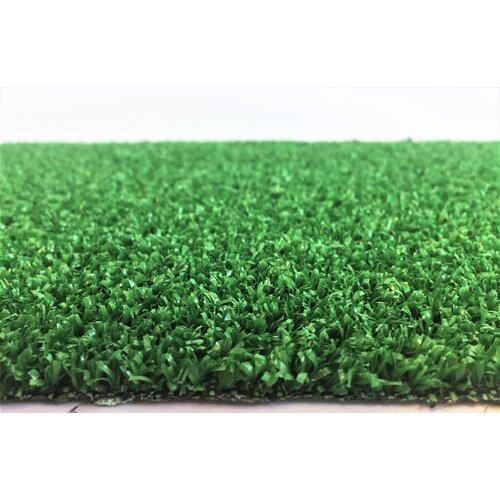Ruegen Olivet Green Rug Sol 72 Outdoor Rug size: Runner 200