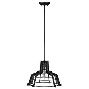 Williston Forge Dunnigan 1-Light Dome Pendant