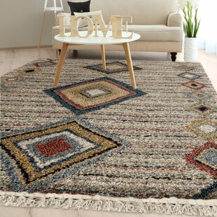 Top Reviews Danielian Tribal Door Off White Area Rug By Foundry Select