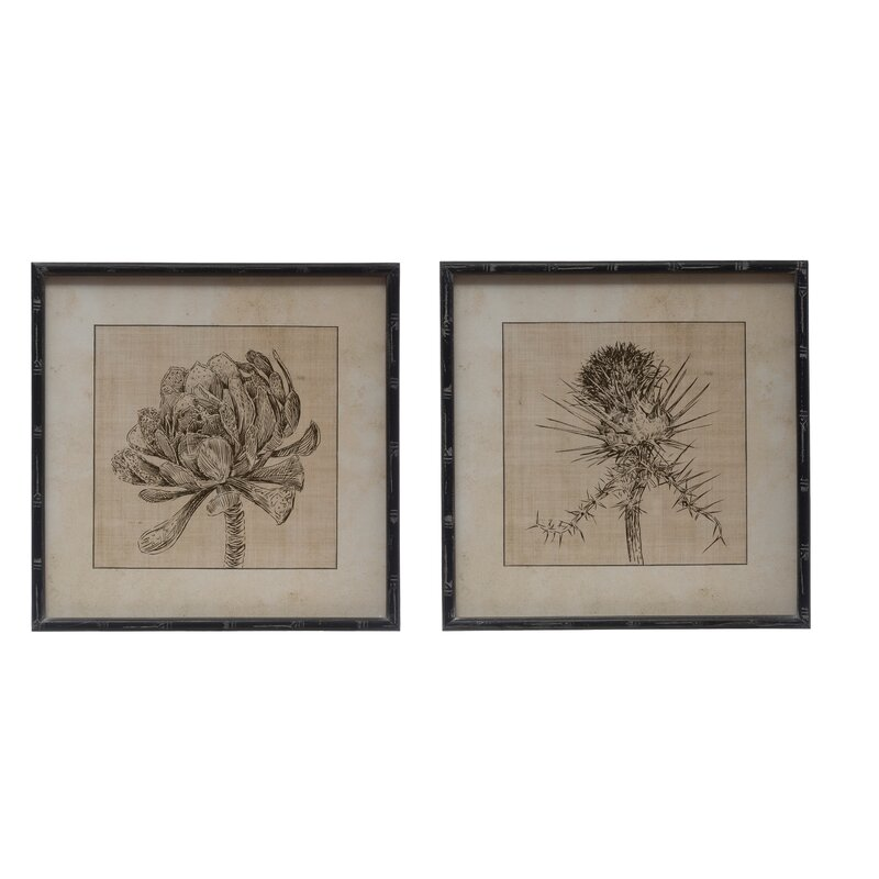 Botanical Sketches 2 Piece Picture Frame Drawing Print Set On Paper Reviews Birch Lane