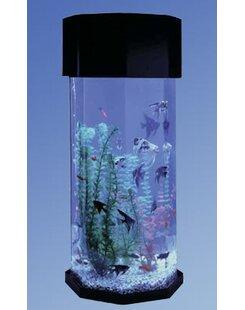 10 Gallon Aquarium | Wayfair