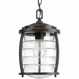 Loon Peak Celestine 1-Light Outdoor Hanging Lantern