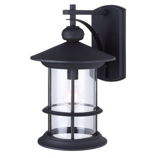 Wheaton 1-Light Outdoor Wall Lantern