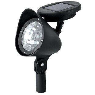 NorthernInternational 1-Light Flood Light