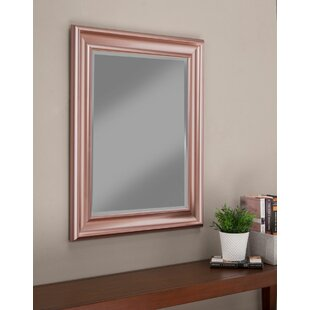 Northcutt Accent Mirror By Willa Arlo Interiors