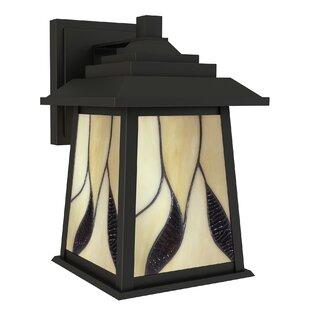 Darby Home Co Ethen 1-Light Outdoor Wall Lantern