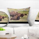 Buffalo Pillow Wayfair