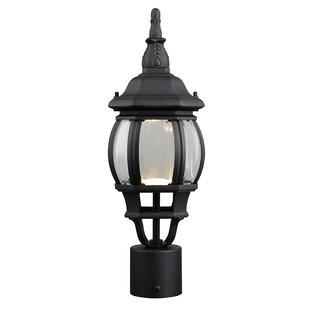 Alcott Hill Diederich 1-Light LED Lantern Head