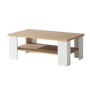 Brayan Coffee Table With Storage By Brambly Cottage
