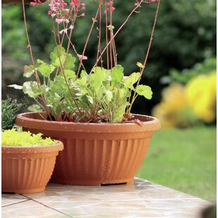 Johnstone Plastic Plant Pot By Sol 72 Outdoor