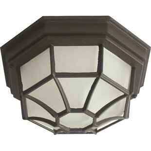 Monument 1-Light Outdoor Flush Mount