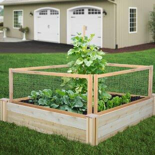 Raised Garden Beds & Elevated Planters You'll | Wayfair on