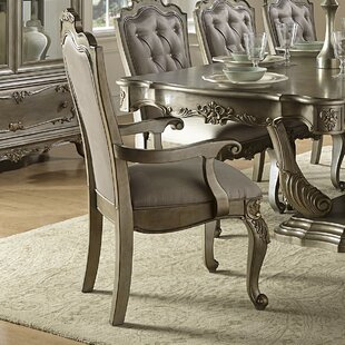 Turville Arm Chair (Set of 2) by Astoria Grand