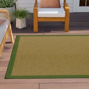 Barham Brown Indoor/Outdoor Area Rug