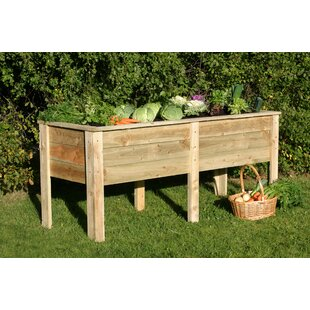Jimmy 180cm X 70cm Wooden Raised Flower Bed By Freeport Park
