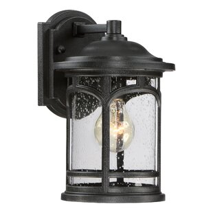 Sheppard 1-Light Outdoor Wall Lantern