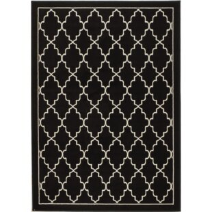 Best Choices Northpoint Black Area Rug By Mercer41