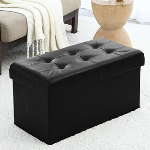 Awe Inspiring Winston Porter Macapanas Storage Ottoman Nice Guaranteed Gmtry Best Dining Table And Chair Ideas Images Gmtryco