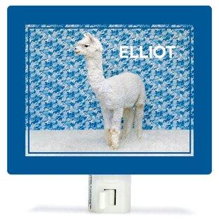 Oopsy Daisy Llama On Blue ..