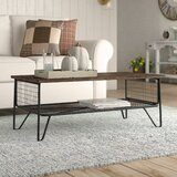 Odile Trestle Coffee Table with Storage by Laurel Foundry Modern Farmhouse®
