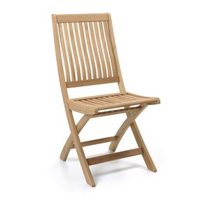 Ackerson Folding Garden Chair By Brambly Cottage