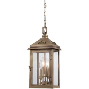 Merton 4-Light Outdoor Hanging Lantern by Darby Home Co
