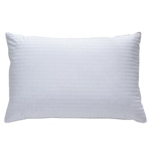 Alwyn Home Naked Goose Plush Down Pillow