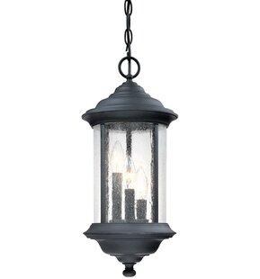 Charlton Home Devizes 3-Light Outdoor Hanging Lantern