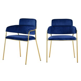 Wendell Modern Blue Velvet & Gold Dining Chair (Set of 2) (Set of 2) Everly Quinn