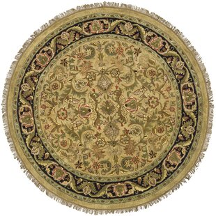 Compare prices Cardwell Hand-Tufted Wool Light Green / Black Area Rug By Darby Home Co