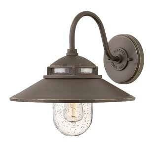Laurel Foundry Modern Farmhouse Hellebore 1-Light Outdoor Barn Light