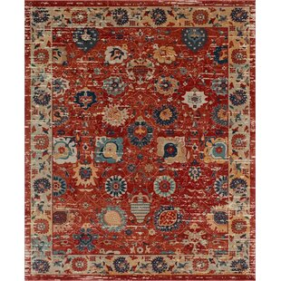 https://secure.img1-fg.wfcdn.com/im/95368885/resize-h310-w310%5Ecompr-r85/7530/75303079/cuthbertson-red-area-rug.jpg