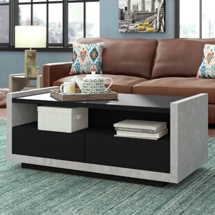 Luzerne Contemporary Coffee Table with Magazine Rack