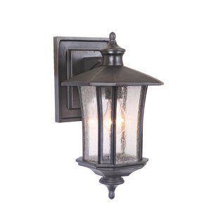 Reviews Searsmont 1-Light Outdoor Wall Lantern By Darby Home Co