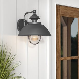 Nishi 1-Light Outdoor Barn Light By Beachcrest Home Outdoor Lighting