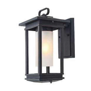 Where buy  Zito Sconces Outdoor Wall Lantern By Winston Porter