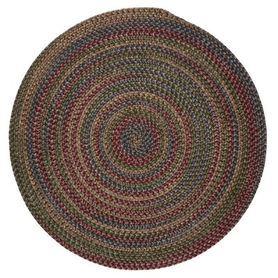 9 Amp 10 Red Area Rugs You Ll Love In 2020 Wayfair