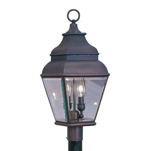 Gwynn Outdoor Post Lantern in Bronze by Three Posts