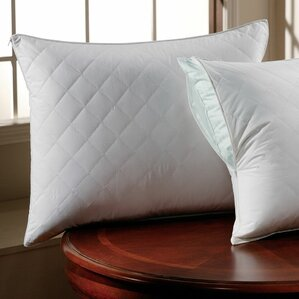 300 Thread Count Sateen Quilted Pillow Protector by Alwyn Home