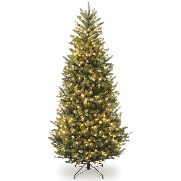 Natural Christmas Tree.Natural Fraser Slim Green Fir Trees Artificial Christmas Tree With 600 Incandescent Clear White Lights