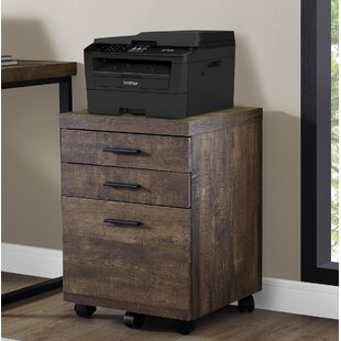 Union Rustic Schroeder 3-Drawer Lateral Filing Cabinet