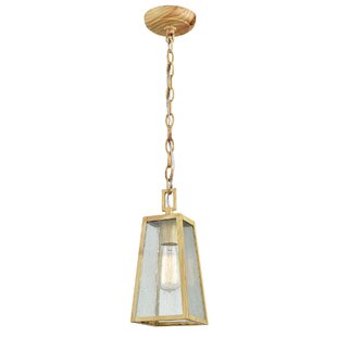 Karly 1-Light Outdoor Pendant