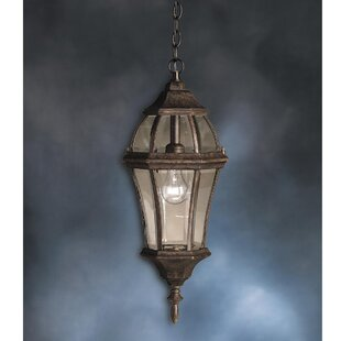 Connan 1-Light Outdoor Hanging Lantern