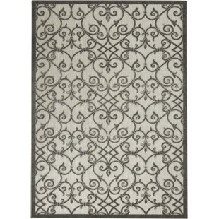 Weon Handwoven Flatweave Charcoal/Gray Indoor/Outdoor Area Rug