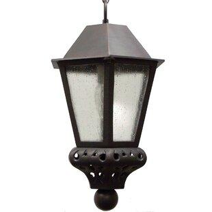 Alcott Hill Phillipstown 1-Light Outdoor Hanging Lantern