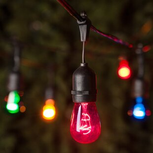 Wintergreen Lighting 24 Light Globe String Lights