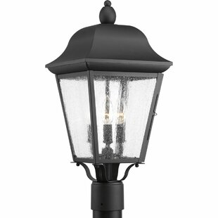 Ephraim 3-Light Lantern Head by Darby Home Co